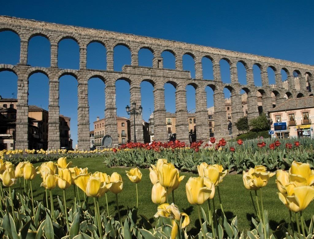 Flores a domicilio en Segovia